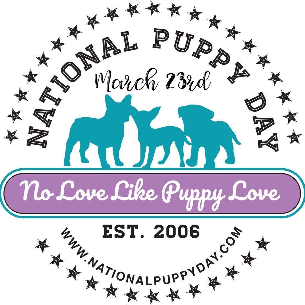 national puppy day social media post